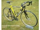 NELSON R240-1 Carbon Composite Road Race Frameset. click to zoom image